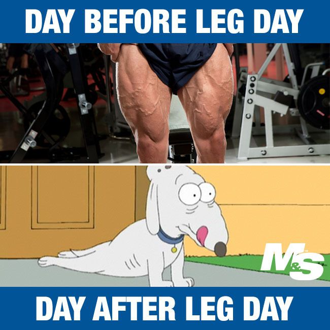 Funny Meme About Leg Day : Best quot after leg day memes of all time veemly