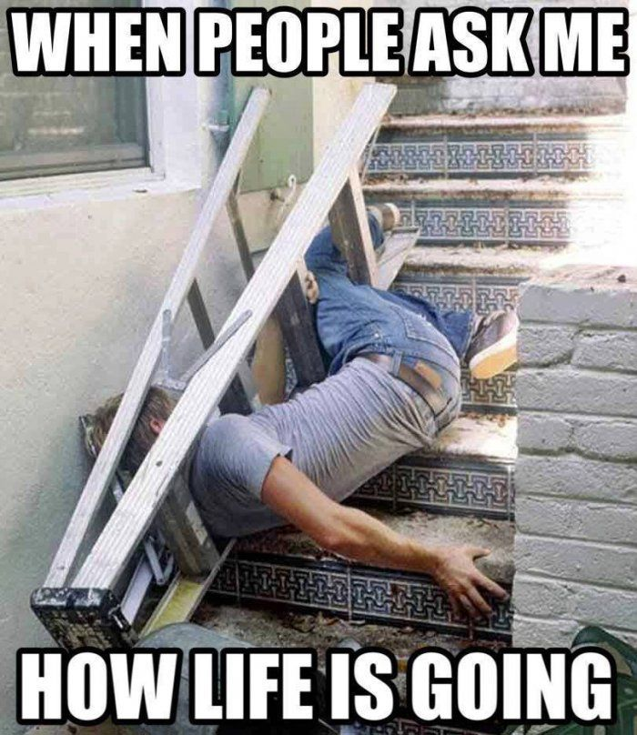 Funniest Memes Ever Dirty : When people ask me how life is going meme funny dirty
