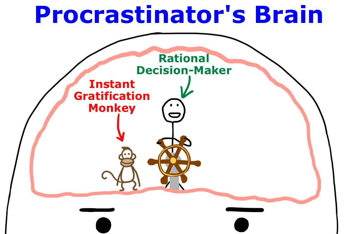 a step by step guide for procrastinators on how to write an essay