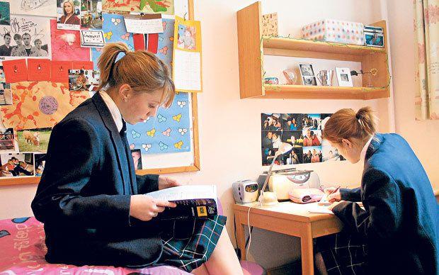 home school vs traditional school essay