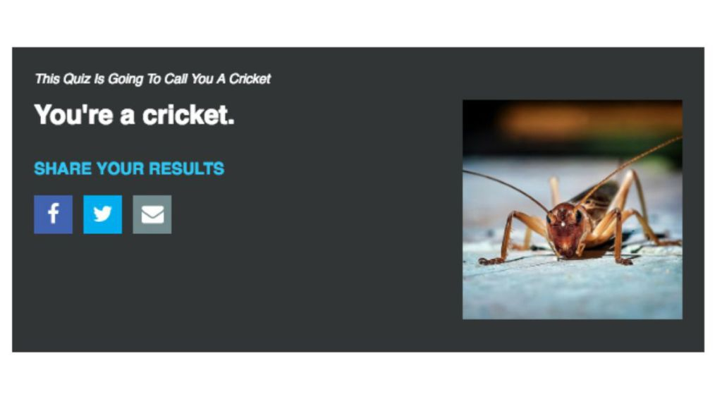 this quiz is going to call you a cricket