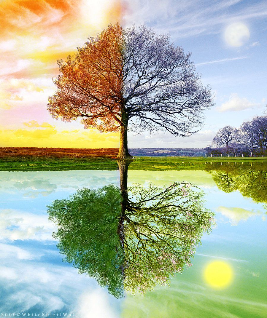 to everything there is a season Have you noticed a change in the change of seasons science wants to know  more.