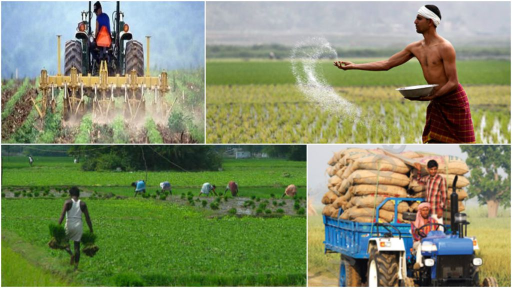 essay indian agriculture 100% free papers on agriculture in tamil essays agriculture essay agriculture essay environment essay global warming essay india history of indian agriculture.