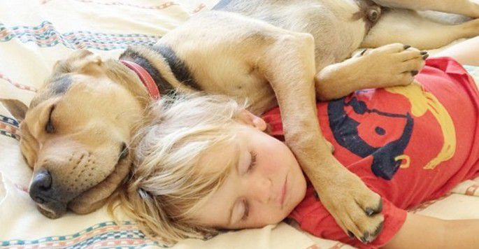 And His Rescue Puppy Have Been Napping Together Every Day For - Toddler naps with puppy