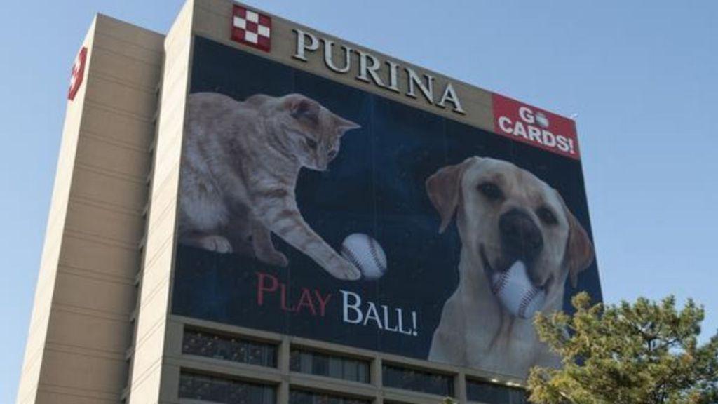 Blue Brand Dog Food Lawsuit