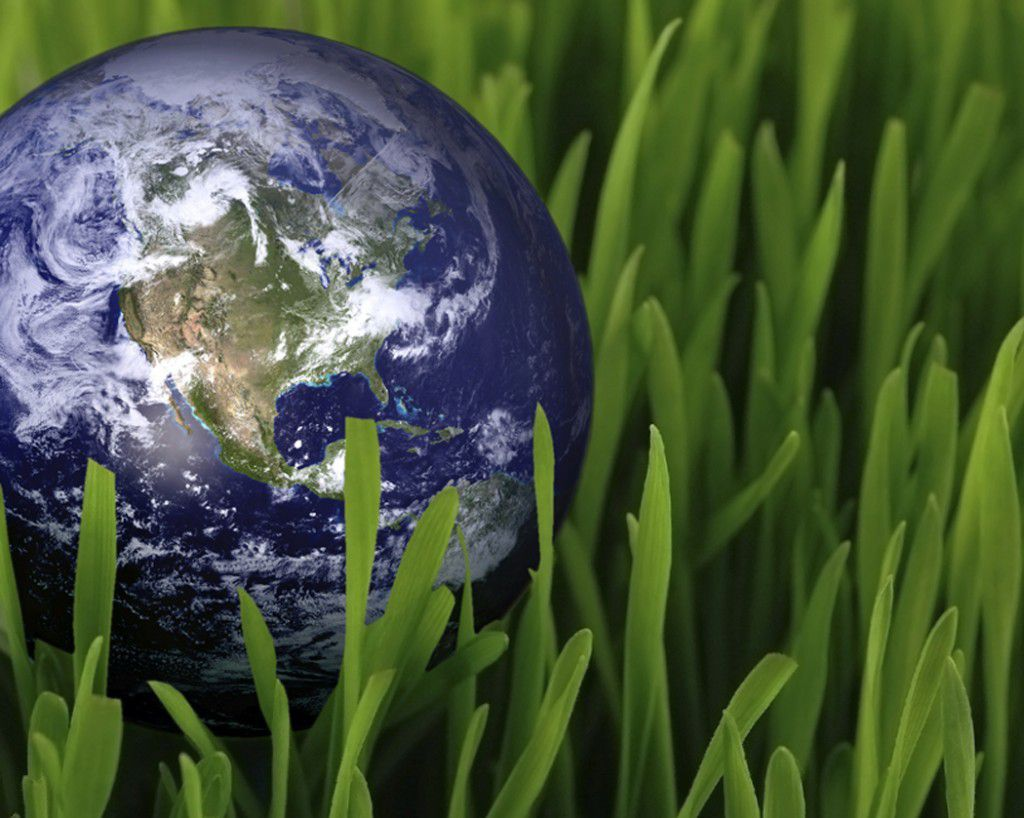 essay about care creation care for creation of environment