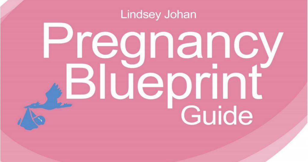 Johan pregnancy blueprint ebookpdf lindsey johan pregnancy blueprint ebookpdf malvernweather Image collections