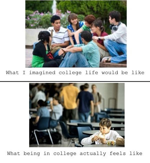 my college experience The first year at college: issues freshmen face, studying, time management, more.