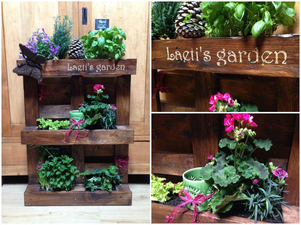 Mini Jardin Palette Pallet Mini Vertical Garden 1001 Pallets