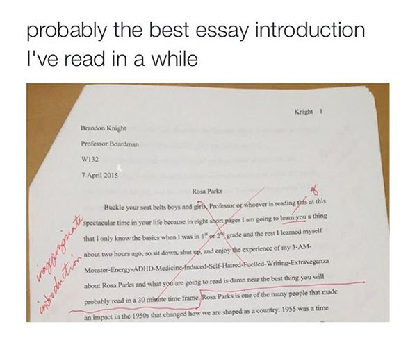 this the best essay introduction ever is this the best essay introduction ever
