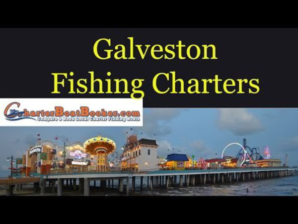 Galveston fishing charters charter boat booker for Galveston fishing charter